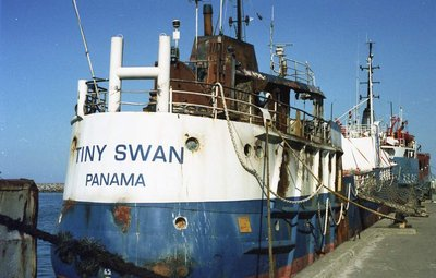 tiny swan 1944 ex high heat in grenaa 1999 zomer.jpg
