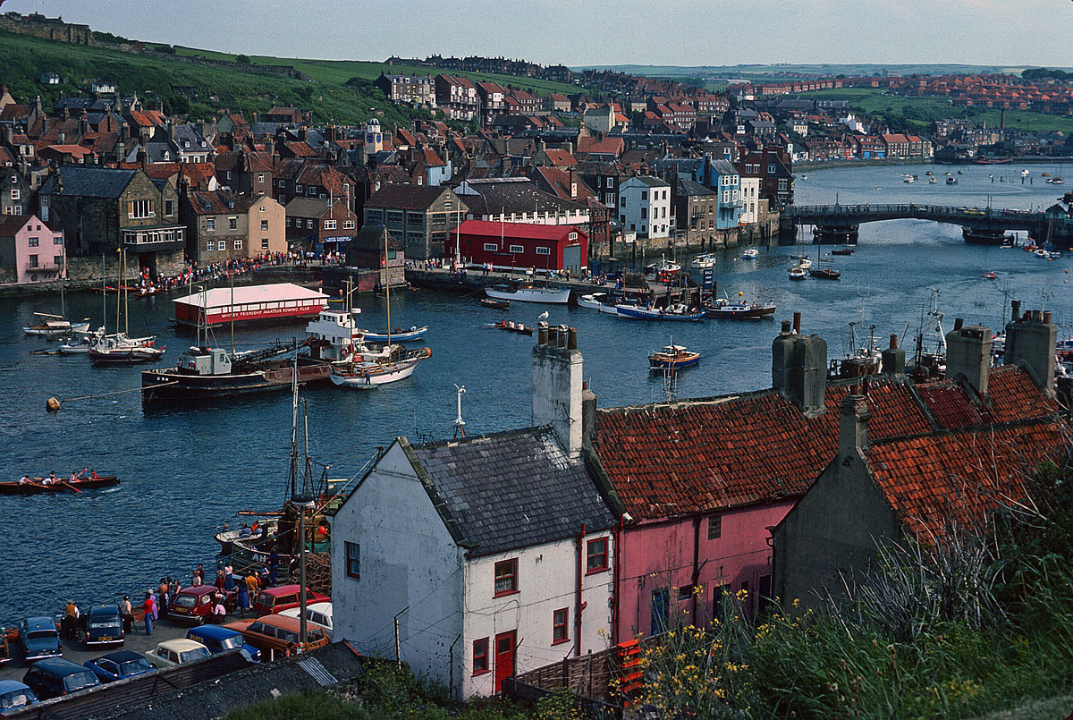 Whitby overview .jpg