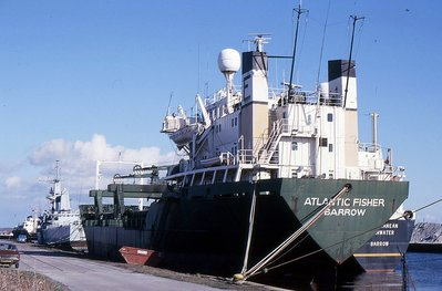 ATLANTIC FISHER 310888a.jpg
